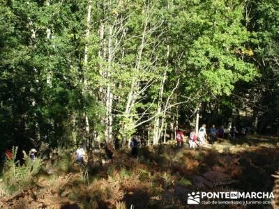 Ruta de senderismo --- Parque Natural Saja-Besaya; rio jarama; rutas cercedilla